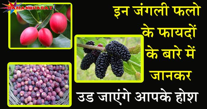 क्या आप जानते हैं इन जंगली फलों के फायदों के बारे में, जानकर रह जाएंगे दंग