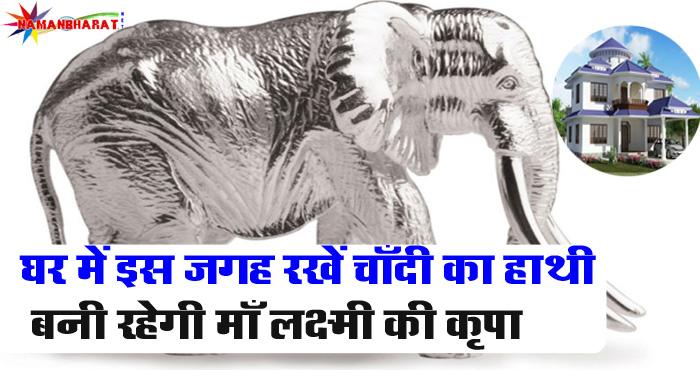 आप भी चाहते है की धन-धान्य में हो वृद्धि तो अपने घर में इस जगह रखें चाँदी का हाथी