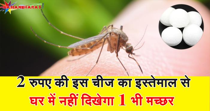 घर में नहीं दिखेगा एक भी मच्छर बस दो रुपए की इस चीज का कीजिए इस्तेमाल